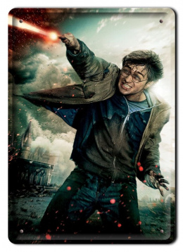 PLAKAT METALOWY SZYLD RETRO HARRY POTTER #11983