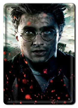 PLAKAT METALOWY SZYLD RETRO HARRY POTTER #11984