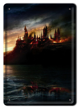 PLAKAT METALOWY SZYLD RETRO HARRY POTTER #11985
