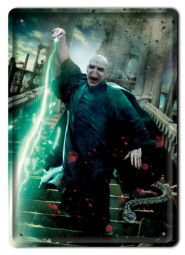 PLAKAT METALOWY SZYLD RETRO HARRY POTTER #11987